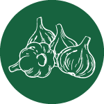 Garlic-Icon